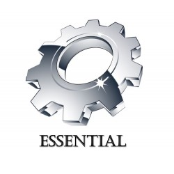 1. Essential Website Design