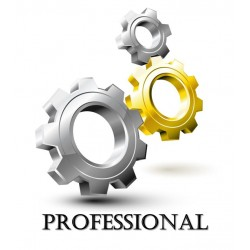 2. Professional Website Design